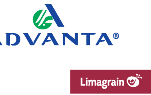 Advanta - Limagrain